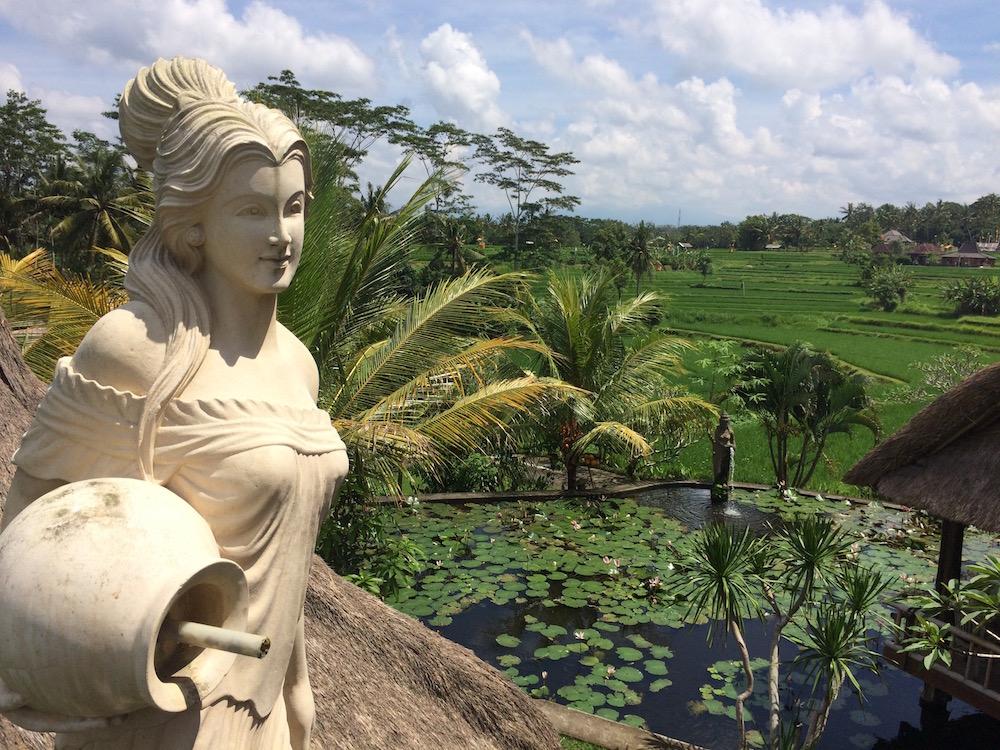 digital nomad Bali